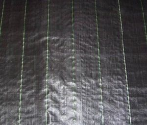 PP Woven Weed Mat
