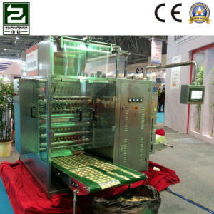Starch Powder Four-Side Sealing and Multi-Line Packing Machine pictures & photos