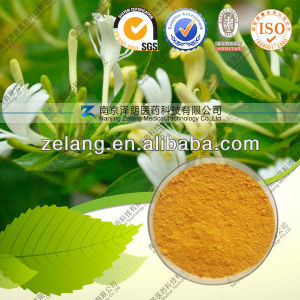 Natural Honeysuckle Extract /Chlorogenic Acid pictures & photos