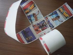 80mm Printer Cash Register Paper Rolls (SP2#) pictures & photos