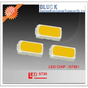Cheap SMD LED 5730, Hot Sale