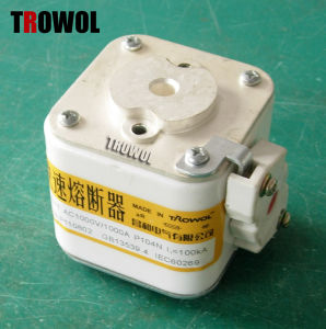 Semiconductor Fuse (RS8 P1m104N)