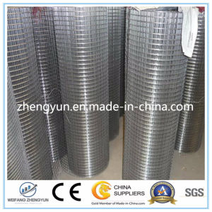 Made in China Low-Carbon 2 Inch Galvanized Welded Wire Mesh pictures & photos