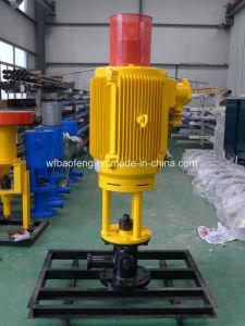 Petroleum PC Pump Screw Pump Ground Transmission Direct Driving Device pictures & photos