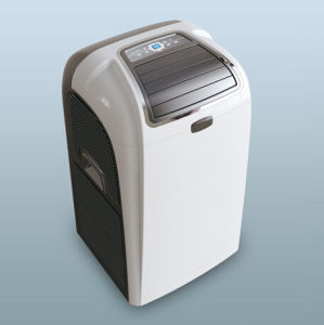 Offer More Free Spare Parts Portable Air Conditioner (S) pictures & photos
