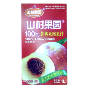 250ml Brick Juice Carton pictures & photos