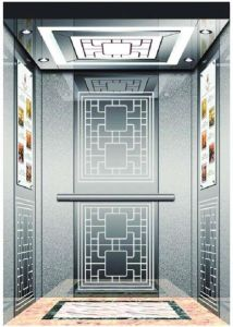 German Residential Home Lift/Elevator with Vvvf Drive (RLS-245) pictures & photos