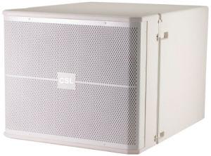 Active Line Array Subwoofer Vrx918sp Powered Speaker Amplifier PRO Audio pictures & photos