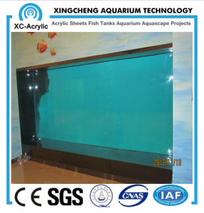 Large Aquarium Transparent Glass Wall pictures & photos
