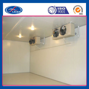 Cold Room and Freezer for Fish, Meat, Food, Fruit, Vegetable pictures & photos
