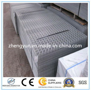 Made in China Supplier Galvanized Welded Wire Mesh Panel pictures & photos