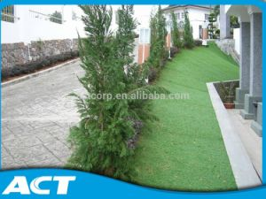 Synthetic Turf for Residential Landscaping Direct Manufacturer pictures & photos