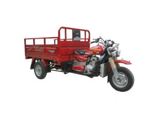 175cc Cargo Tricycle pictures & photos