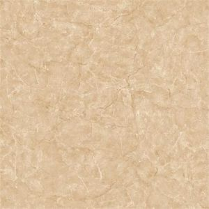3D Injekt Porcelain Floor Tile for Bathroom pictures & photos