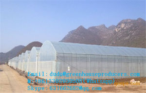 Lowest Price $6.45 USD/M2 Multi-Span Gothic Film Greenhouse FM-8m (HDG)