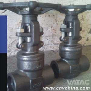 Thread End Bolted Bonnet Globe Valve pictures & photos
