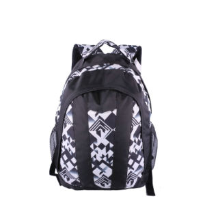 Leisure Laptop Backpack Outdoor Hiking Travel Bag pictures & photos