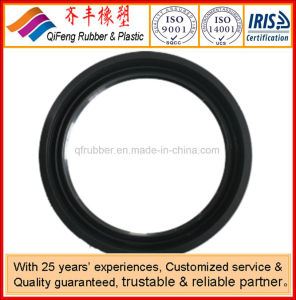 Rolling Bearing Rubber Oil Seal pictures & photos