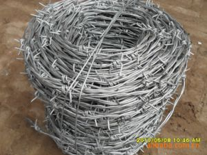 Barbed Wire, Galvanized/ PVC Coated/ Plastic Sprayed Barbed Wire pictures & photos