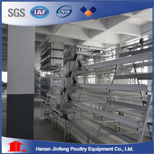U-Shaped Steel Barbroiler Chicken Cagemanufacture Companybattery Layer Poultry Cages (BDT034-JF-34) pictures & photos