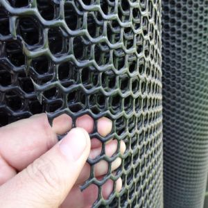 Hexagonal Hole Shape Plastic Flat Netting for Sale pictures & photos
