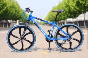 "2014 New Fashion 26"" Mountain Bike (AFT-MB-074)"