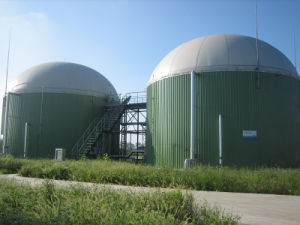 Manufacturer Price Cow Farm/Sewage with CHP System 20-1000kw 250kw 500kw Biogas Digester/Biogas Gas Generator/Power Plant/Generator pictures & photos