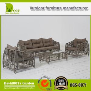 Wholesale Outdoor Furniture Sectional Sofa, Dgs-0071 Furniture Sofa Set pictures & photos