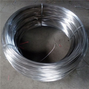 Stainless Steel Wire for Scrubber Making pictures & photos