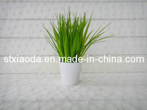 Artificial Plastic Grass Bonsai (C0284)