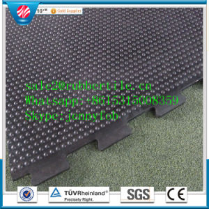 Interlock Cow Stable Mat/Rubber Stable Mat for Animals pictures & photos