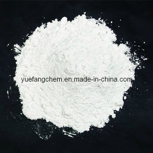 High Quality Rutile Titanium Dioxide for Paint Industry pictures & photos