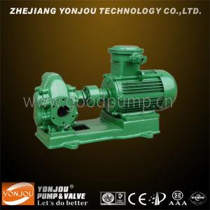 KCB-200 Bronze Rotary Gear Pump, 1 Inch Gasoline Gear Oil Pump, Oil Pump, Gear Pump (KCB 2CY) pictures & photos
