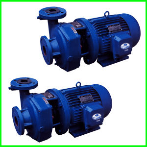 Mini Centrifugal Pump with Electric Motor pictures & photos