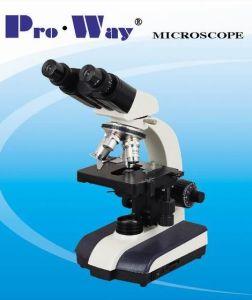 40X-1000X Seidentopf Binocular Biological Microscope (XSZ-PW910) pictures & photos