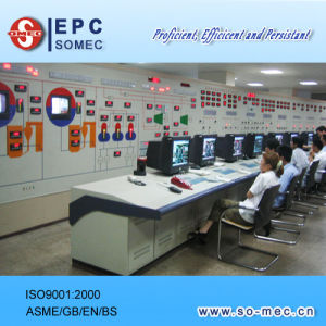 Power Plant Equipment Supplier pictures & photos