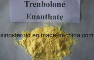 Trenbolone Enanthate Steroid Hormone Tren Enanthate 75mg/Ml