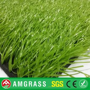 Soccer Turf and Synthetic Grass for Garden pictures & photos