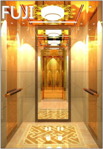 Passenger Lift /Elevator with Mirror pictures & photos