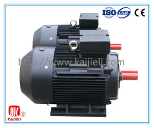 IE2 High Efficiency Three Phase Electric Motor (Black, Cast Iron) pictures & photos