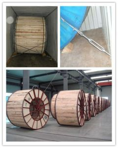 Bare Aluminium Conductor Alloy Reinforced Acar with ASTM Standard pictures & photos