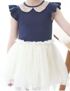 2014 Summer Girls Sleeved Princess Net Skirt Dress/Children Clothing