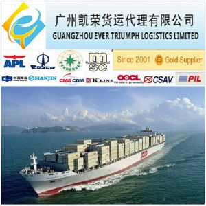 20 40ft Shipping Container Prices From China To Bandar