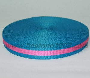 China Factory High Quality Polyester Webbing Strap #1502-10c pictures & photos