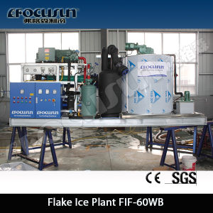 Focusun 5t 10t 15t 20t Flake Ice Maker pictures & photos