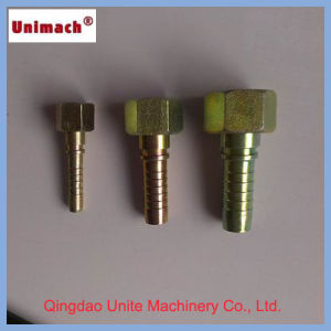 Zinc Plated Metric/NPT/Bsp Hydraulic Fitting/Adapter (10411) pictures & photos