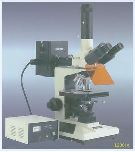 Reflected Fluorescence Microscope (L2001A/B) pictures & photos