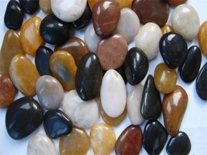 Polished Assorted Pebble