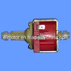 MINI Pump Motor pictures & photos