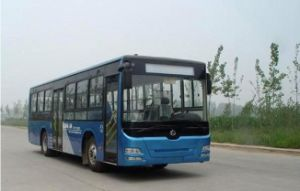 9m City Bus (SC6901HC1J3) pictures & photos